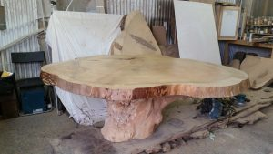 Tree root dining tables